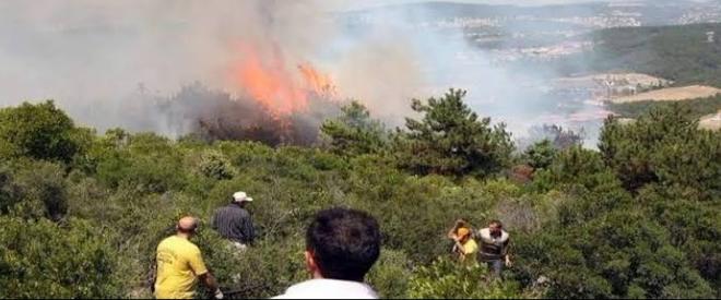 Beykoz'da 3 ayrı yerde çıkan yangın söndürüldü