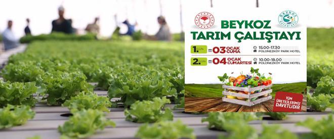 Beykoz tarımı tüm yönleriyle masaya yatırılıyor!